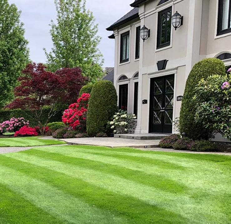 faqs-for-lawn-care