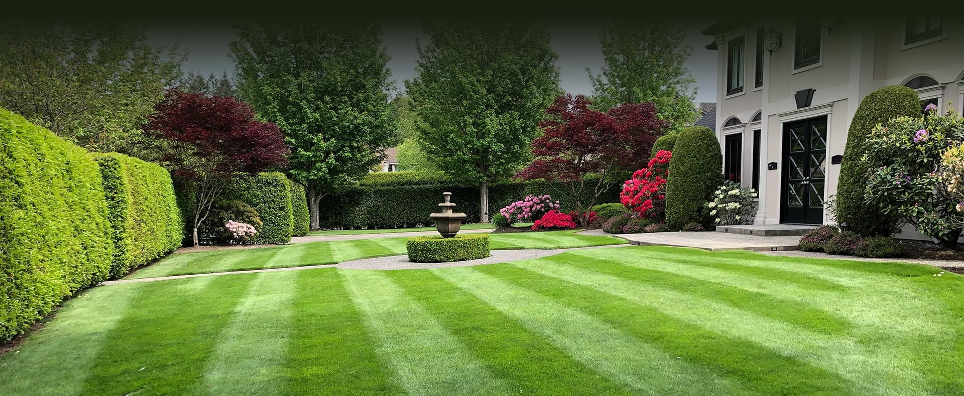 lawn-care-service-specialists
