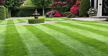 masters-lawn-cut
