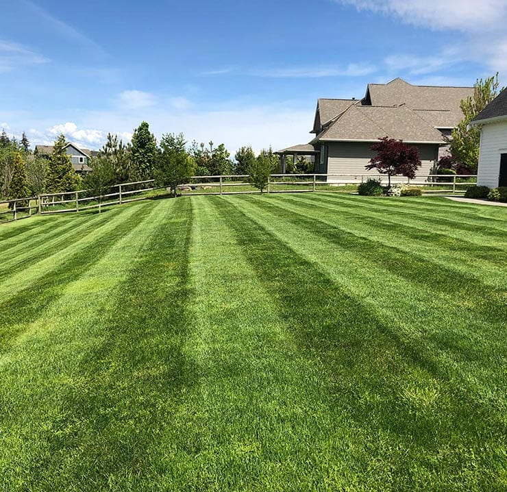 south-langley-lawn-care-company