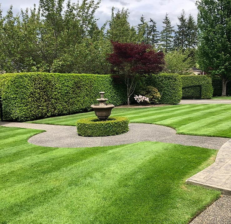 surrey-landscaping-company
